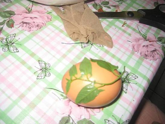 farbanjeuskrsnjih jaja lukovina 1