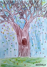 drvo_001