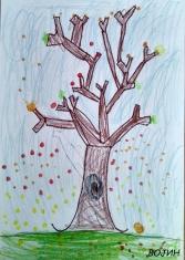 drvo_003