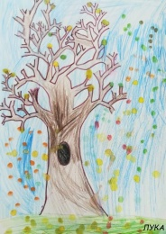 drvo_029
