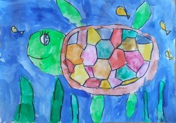 kornjaca012