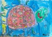kornjaca014