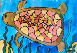kornjaca018
